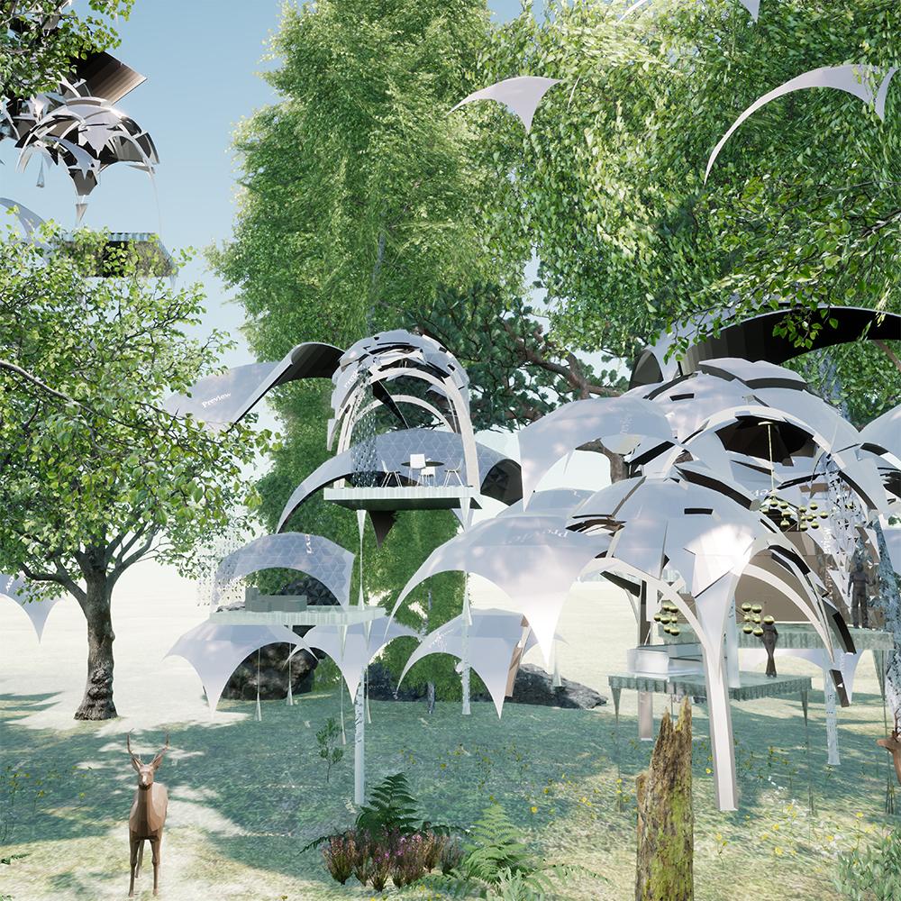 urbanforestsqaure